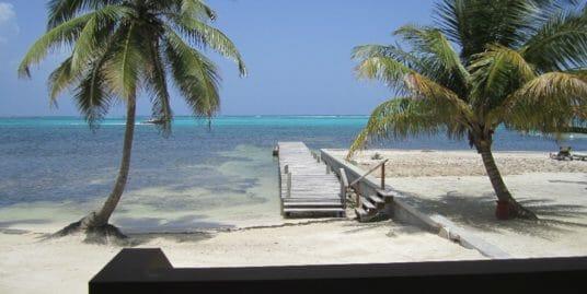 Grand Caribe Condo : 1BR Walk out to Beach